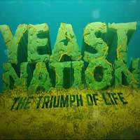 Yeast Nation